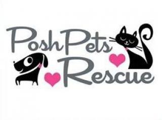 Long Beach Animal Shelter