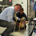 Supervisor Ed Romaine at the Town of Brookhaven Animal Shelter.